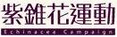 紫錐花運動(點選會開啟新視窗)